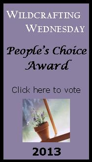 The People's Choice Awards – Last Chance