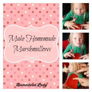 Make-Homemade-Marshmallows-www_homesteadlady_com_