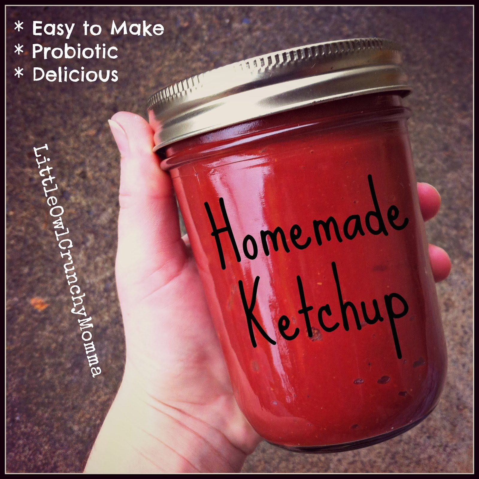 Homemade Ketchup (Probiotic) by Little Owl Crunchy Momma
