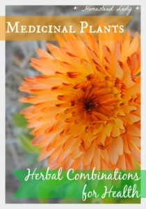 Medicinal-Plants-Herbal-Combinations-for-Health-l-Homestead-Lady