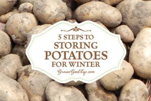 storing-potatoes-growagoodlife