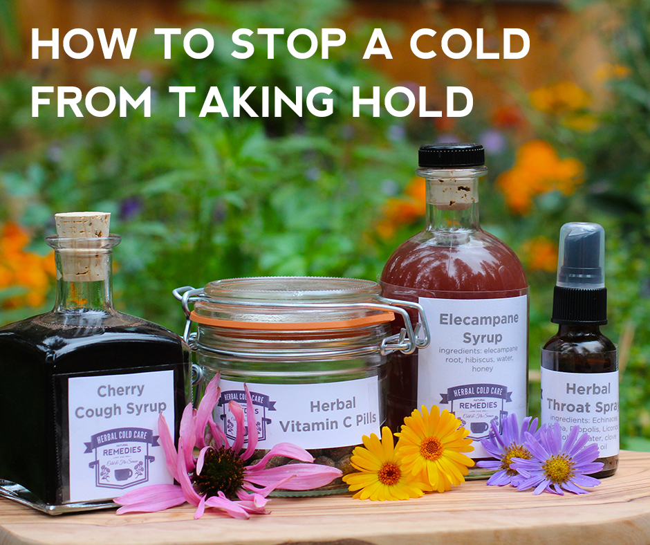 Coming Down With a Cold?  There's a FREE Webinar for That!