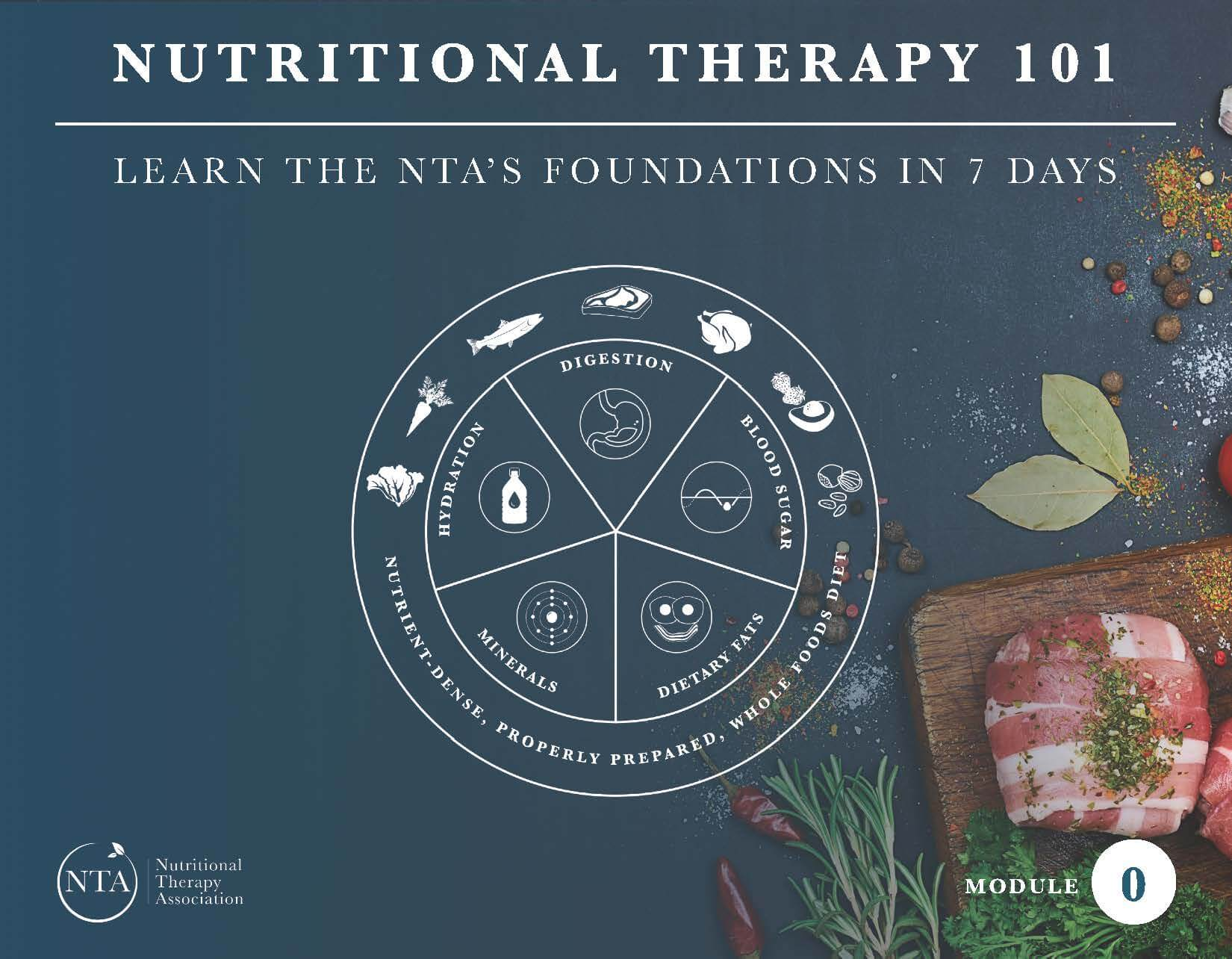 Nutritional Therapy 101