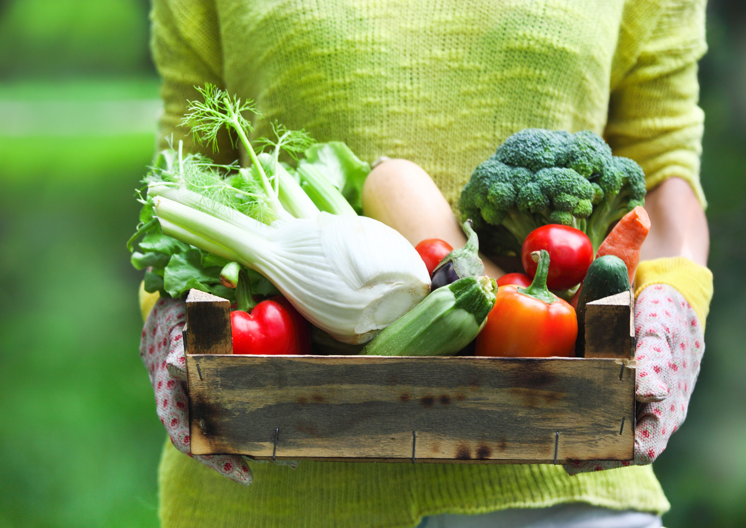 5 Reasons Why Local & In-Season Produce Matters